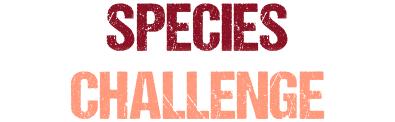 suntaggers_species_challenge